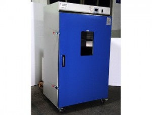 Precision forced air drying cabinet